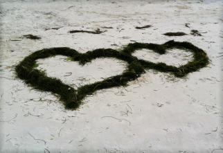 true love MGD©