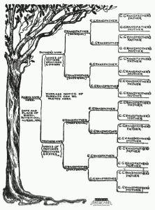 family tree pic